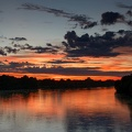 South Luangwa national park, zambia